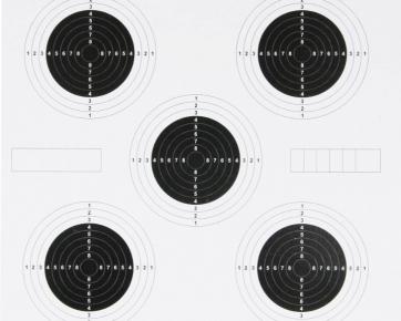 100 25 yard targets